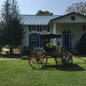 carriage on lawn in front of house